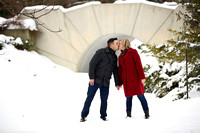 Winter engagement portraits at Dow Gardens