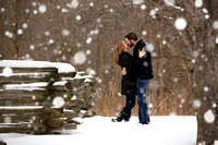 Winter engagement portraits at the Chippewa Nature Center